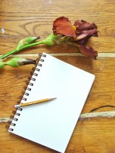 Lillian Kennedy, weeklyartlesson, drawing iris