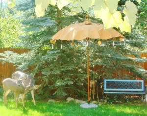 Studio Garden - Lilllian Kennedy