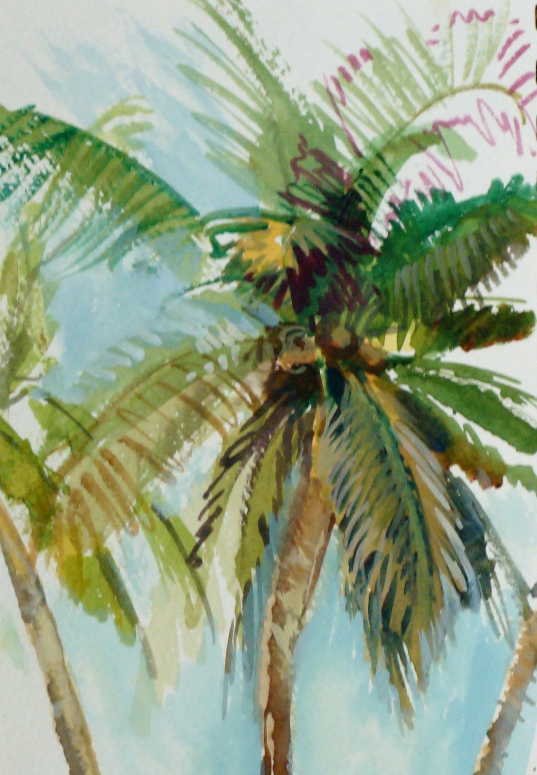 Lesson on how to draw a palm tree lillian kennedy for Painting palm trees