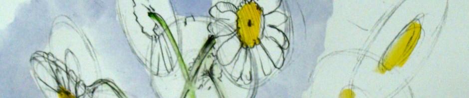daisy drawing, how to draw a daisy