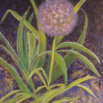 "Margaret Bobb ""Ballet de Fleur"" series - acrylic - Alium stage #9"